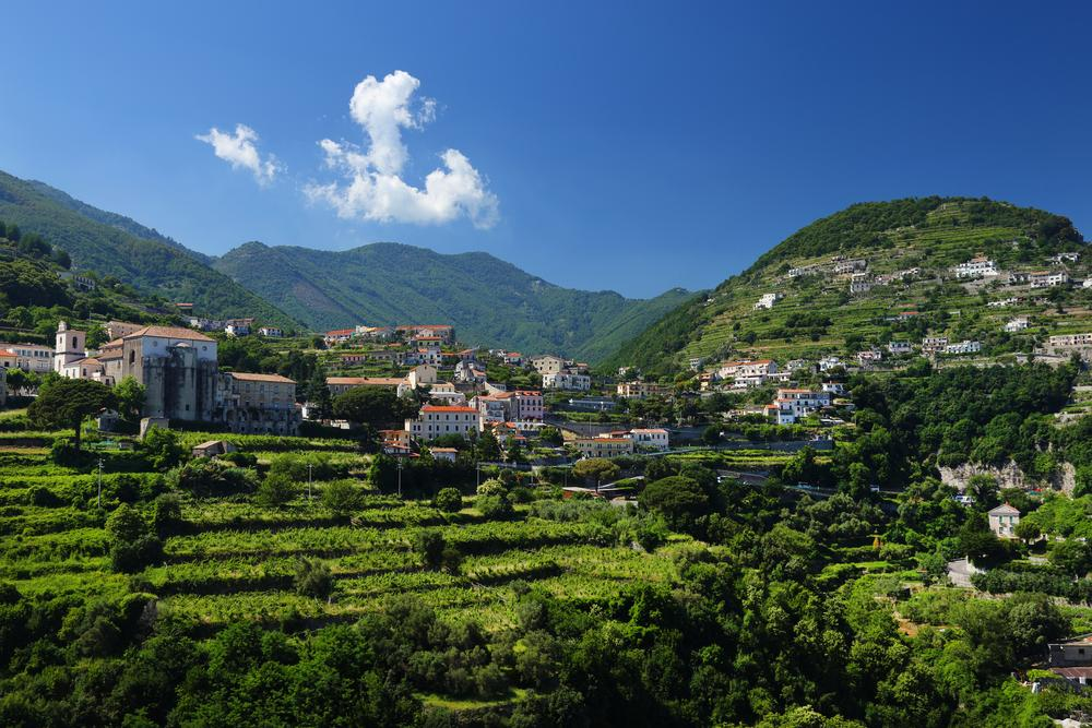 Vineyards among the hills in Ravello